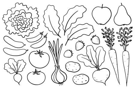 Hand-drawn farm produce