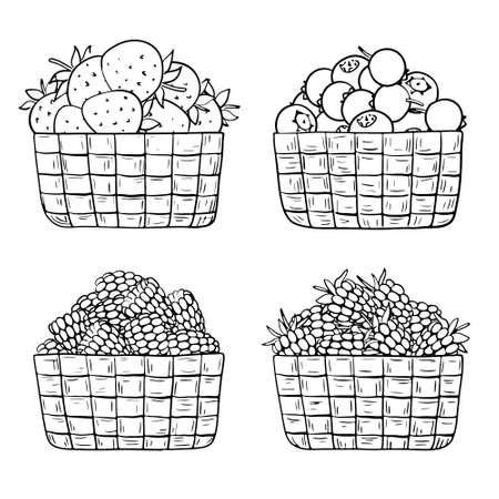 Hand-drawn baskets with berries