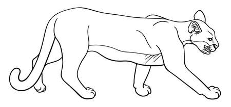 Hand-drawn illustration of a mountain lion 向量圖像