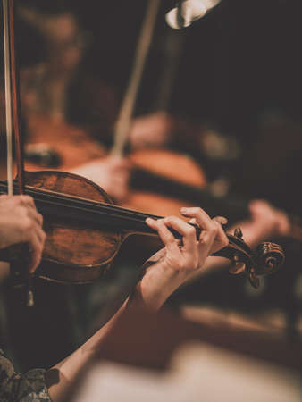 Closeup for the violin and the violinist's hand. Symphony Orchestra Reklamní fotografie