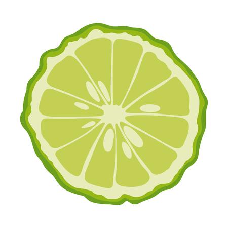 half: bergamot sliced in half Illustration