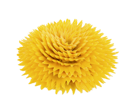 Pumpkin Carving Flower on white background Stock Photo