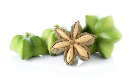 Sacha Inchi on white background, fresh capsule seeds fruit of sacha-Inchi peanut