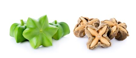 vitamin rich: Sacha Inchi on white background, fresh capsule seeds fruit of sacha-Inchi peanut