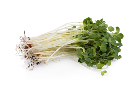 kaiware sprout, japanese vegetable or watercress on white background Stock Photo