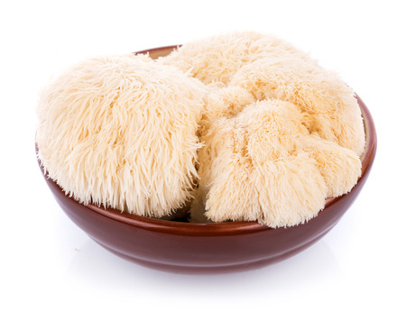 lion mane mushroom isolated on white background Standard-Bild