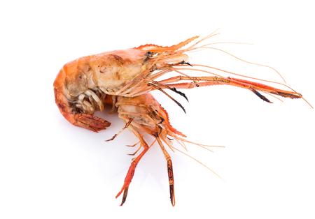 Grilled river shrimp isolated on white background, Prawns