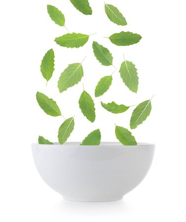Holy basil in bowl on white background
