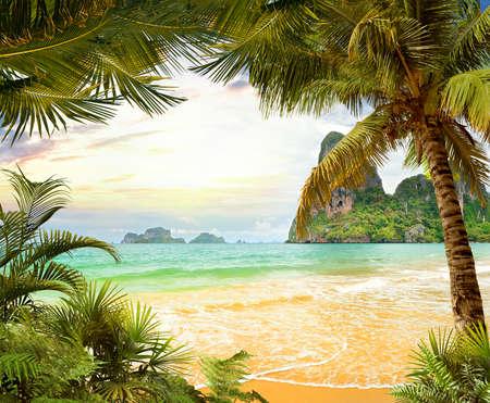 clave sol: Playa de Palma