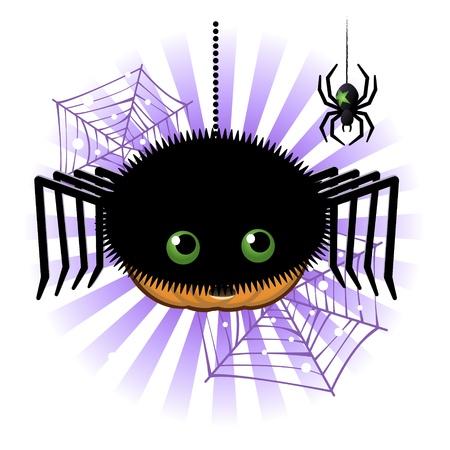 jack o: Halloween pumpkin Jack o lantern in halloween spider costume