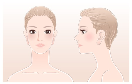 nude female: Portrait of Beautiful woman, front and side view  Isolated Blend tool is used  Illustration