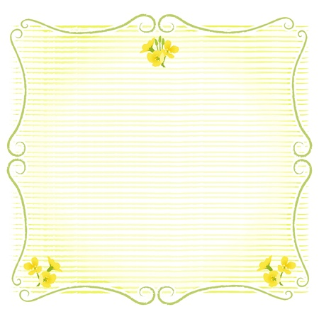 brassica: Stem shaped frame decoration with rape blossoms  Copy space  File contains Clipping mask and Transparency