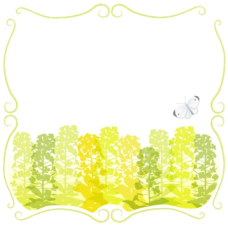 canola: Stem frame with canola flower silhouettes and a white butterfly  File contains Clipping mask and Transparency