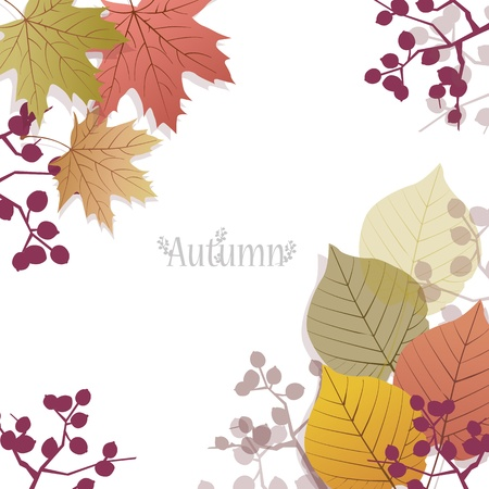 space for images: Beautiful seasonal Background with autumn leaves and berries, with space for text. File contains Clipping mask with un-cropped images (you can edit the position etc), transparency, Gradient.