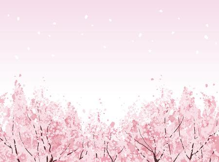 Bella alberi di ciliegio in fiore in fiore. File contiene maschera di ritaglio, gradienti. Archivio Fotografico - 25418212