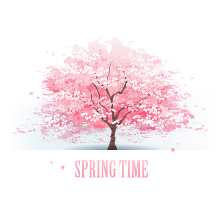 Isolated beautiful cherry blossom tree   Ilustração