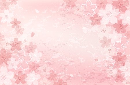 sakura flowers: Pretty, beautiful Shabby Chick Cherry blossom background