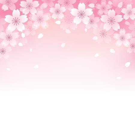 Beautiful Pink Cherry blossom background.  Illustration