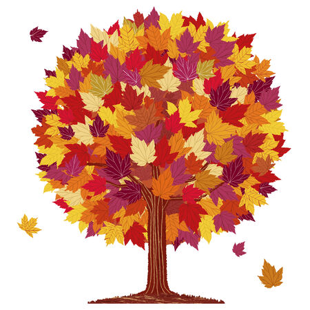 Isolated autumn red leaf ball tree on white background. Vector