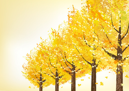 Golden ginkgo trees in late autumn. File contains Clipping masks. Vector