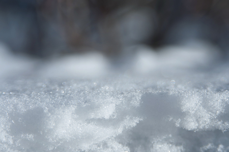 Macro shot of snow crystal on the snow surface