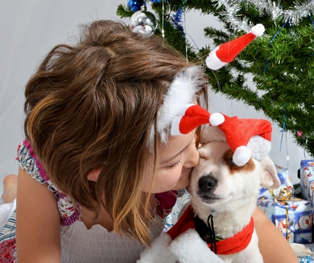 Girl with dog friends Stock Photo