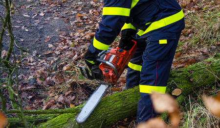 Firefighters in action clear the fallen trees after a windy storm. Stock Photo