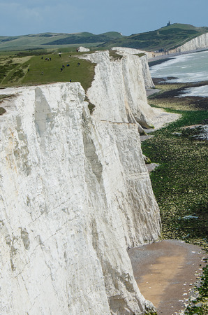World renowned English white cliffs of seven sisters. Stockfoto