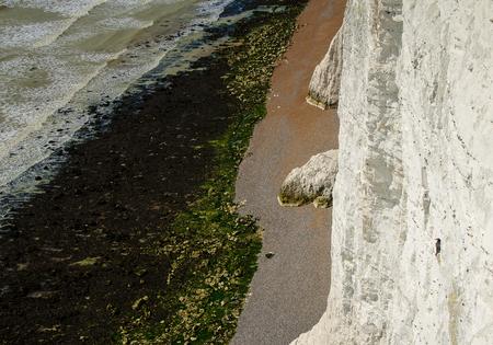 Tengeri madár angolul fehér sziklákon kikelt Hét nővér.