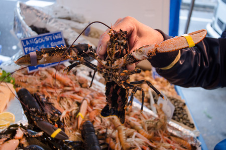 Lobster on the fish market in Paris. Stock Photo