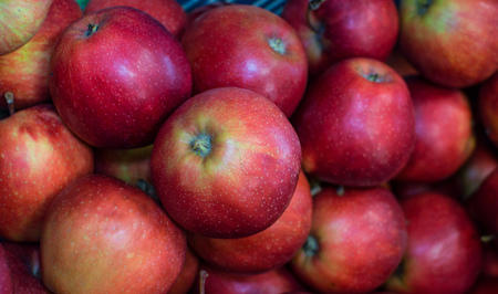 Pile of organic red apples from the farm. Stock Photo