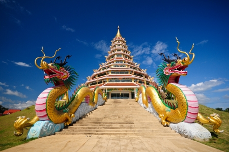 Dragon pagoda photo