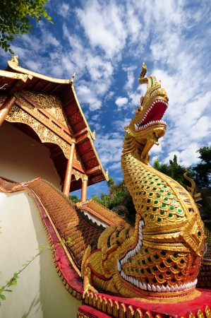 Statue naga front of buddhism temple photo