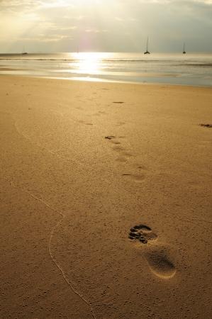 Footprint on sunset beach  Stock Photo