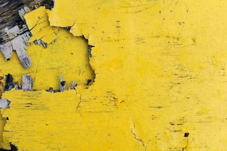 Yellow scantling photo