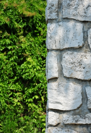 Grey Stone Block Texture and Grass Wall photo