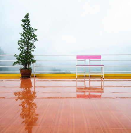 Empty pink chair and tree pot in the rain with fog  photo
