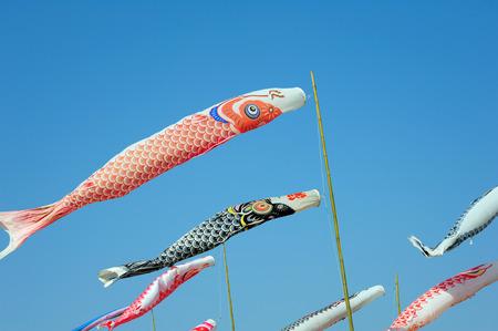 flutter: Colourful carp streamers or Koinobori flutter in the wind. Stock Photo