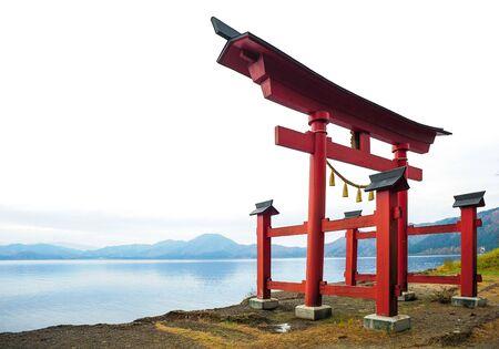 torii: Torii gates near river