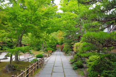 stone path: stone path in zen garden Editorial