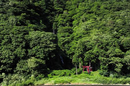 torii: torii in mountain Editorial