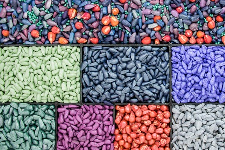 seed sunflower seeds, corn, radishes. painted agro color for sorting and labeling.
