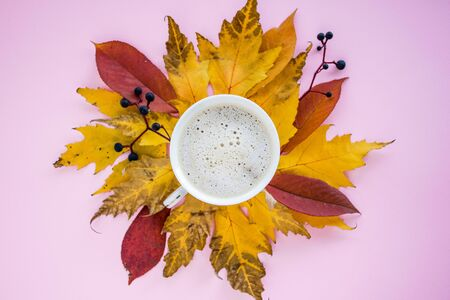 Autumn composition. mug of cappuccino and yellow and red leaves with berries on a pink background. autumn background. flat lay, top view, copy space