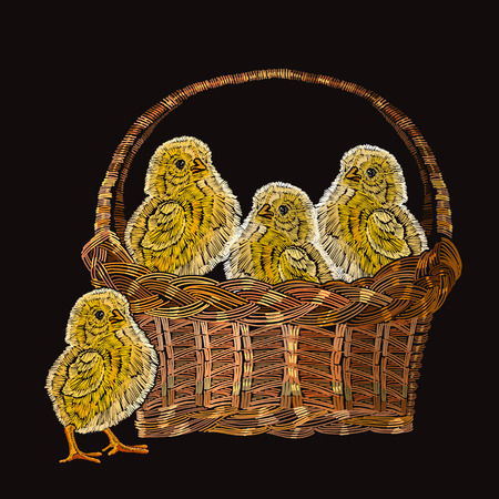Embroidery chickens in a basket. Classical embroidery beautiful yellow chickens. Template for clothes, textiles, t-shirt design