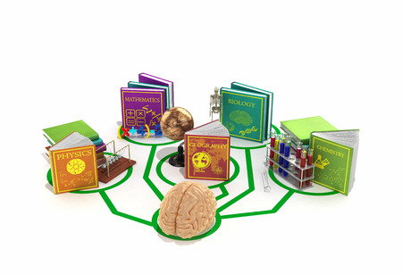 the brain is connected to the lines of books dedicated to different sciences 3d render on a white background