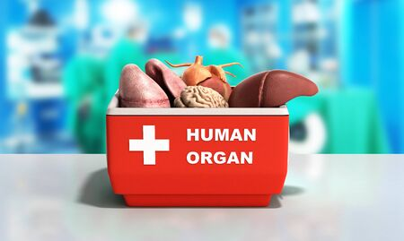 organ transportation concept open human organ refrigerator box red 3d render medical  background Stock Photo