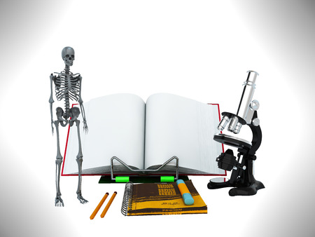school class: Concepts of school and education biology 3d render on gray background Stock Photo