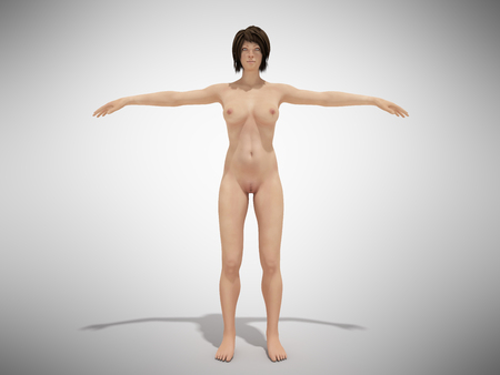 A woman body for books on anatomy 3d render on grey