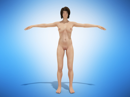A woman body for books on anatomy 3d render on blue