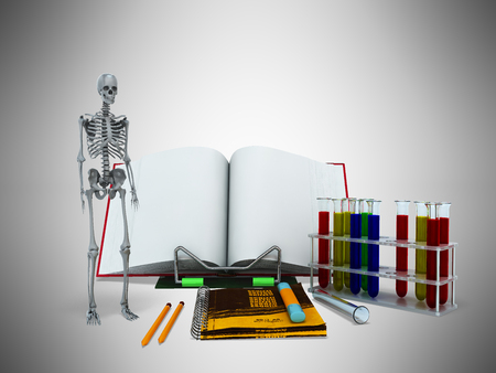 school class: Concepts of school and education biology test tubes skeleton 3d render on gray background
